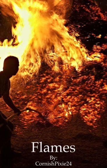 Flames **** A Holes Fanfiction (ON HIATUS)