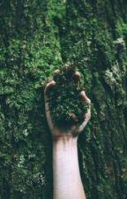 Treebros Drabbles by lazyspinach