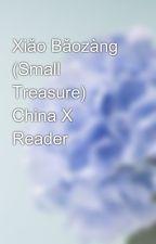 Xiǎo Bǎozàng (Small Treasure) China X Reader by Snowball_Theory