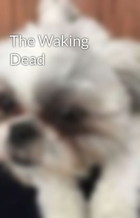 The Waking Dead by Jonnorlovir822