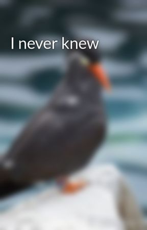I never knew by buechler
