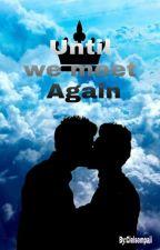 Until we meet again by CielSempaii