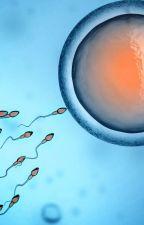 El donante de esperma (Harry y Tu)TERMINADA by ElaManyoma