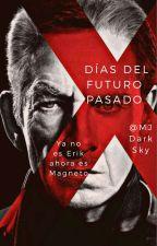 X-Men Días Del Futuro Pasado (Erik Lehnsherr) by MJDarkSky