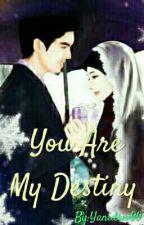You Are My Destiny by yaniayd