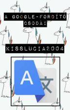 A Google-fordító csodái by KissLucia2004