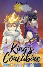 King's concubine [KHR] [M-preg] by Tsubasa-Tenjuu