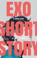 SHORT STORIES with EXO by irishlevyona