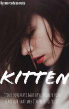 Kitten by mercdesaliciamata