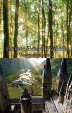 Amber Evans (Potter) - Vergangenheit by Streifenkauz