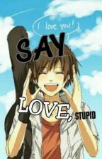 Say Love, Stupid! (VeNal) by umikinal