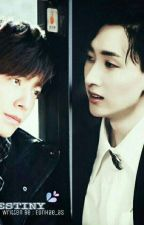DESTINY by EunHae_as