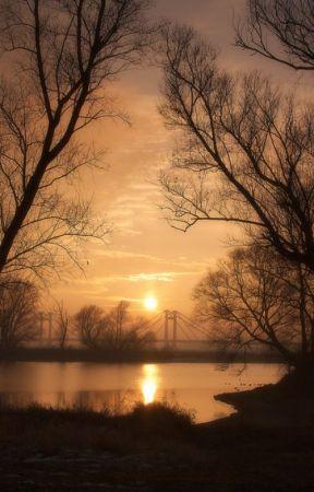 Short Poems by jacksellington21