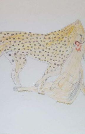 cInDeR. gEtS. cRiNgY. (art book #1) by Cinderburr