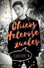 Chicos Heterosexuales|Ziam Palik| by liamstormy