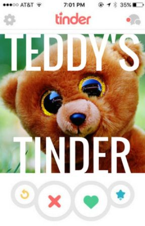 teddy's tinder profile draft.docx by SpencerN1
