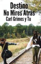 Destino, No Mires Atras (Carl Grimes y tu) by JudithMGrimes