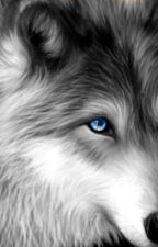 The Werewolf's Cry by silver_golden_fox
