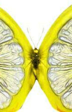 Wings of fire lemons - Wilu(1) - Wattpad