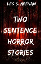 Two Sentence Horror Stories by Mr__Horror