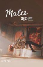 ˗ˏˋ Mates ˎˊ˗ by TaeChou