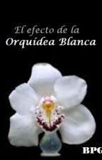 EL EFECTO DE LA ORQUÍDEA BLANCA © by BetyLunaboo