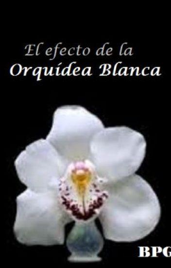 EL EFECTO DE LA ORQUÍDEA BLANCA ©