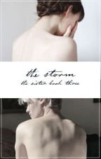 The Storm | The Sister book #3 | A Harry Potter Fanfiction by Aloha--Mora