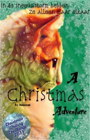 A Christmas Adventure by Amberino12
