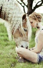 Horse Camp by kackamalfoyova