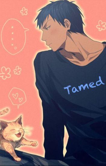 Tamed {Aomine x Reader}