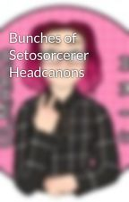 Bunches of Setosorcerer Headcanons by spaced_nerd