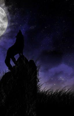 Đọc truyện Tôi là sói ! [ Vkook ]