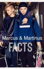 Marcus & Martinus Facts [cz] by salaamg7
