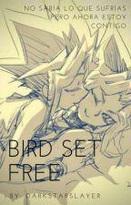 Bird Set Free (Puzzleshipping) by DarkstarHalakti