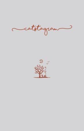 catstagram - saida ↳ sana + dahyun by polarisanha