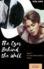 The eyes behind the wall//PJM by LizSorora