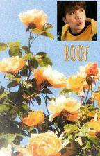 Roof × Sope by mooort