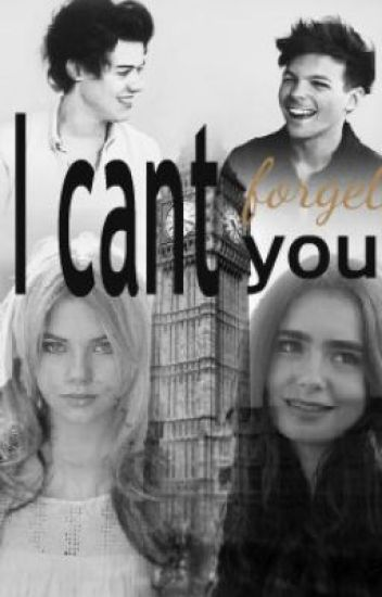 I can't forget you (HarryStyles/LouisTomlinson FF) -Kein Larry