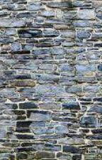 beyond the stone walls by wi11iamz
