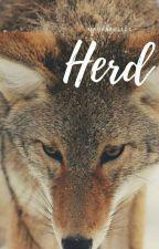 Herd by MarrAzull04
