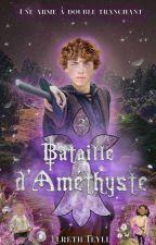Bataille d'Améthyste by ElrethTeyll