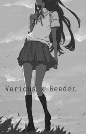Various Characters - bathouse - katsuki bakugou x reader