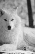 Twilight- The White Wolf by Izaya-Uchiha