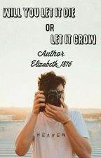 Will You Let It Die, Or Let It Grow?(Shawn Mendes x Reader) [ON HOLD] by Elizabeth_1816