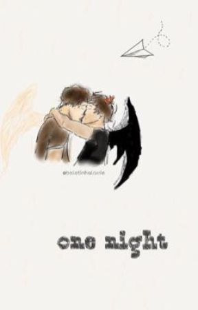 One Night {Twoshots - L.s} by bolotinhalarrie