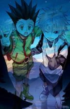 Hunter x Hunter x Reader by black_eyes49