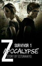 Zombie Apocalypse by Estrhyu