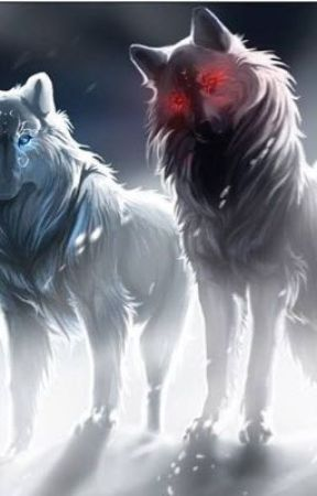 The White Wolf With Blue Eyes How It All Began Wattpad