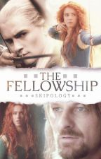 The Fellowship by Skipology